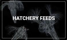 Hatchery Feeds